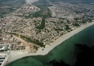 Pino Alto Estate